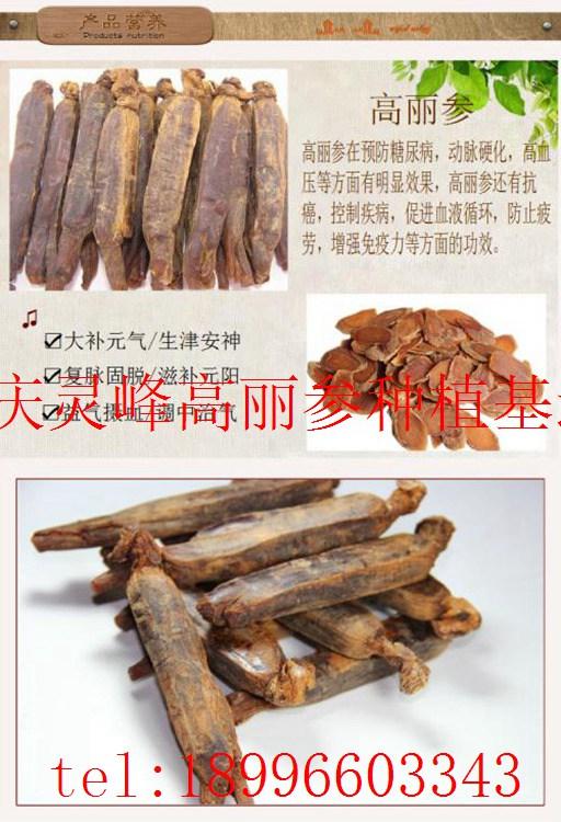 女性服用高丽参的妙处(www.32nb.com)